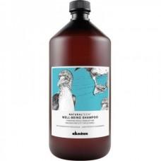 Davines NATURALTECH Well-Being Shampoo - Увлажняющий шампунь для здоровья волос 1000мл