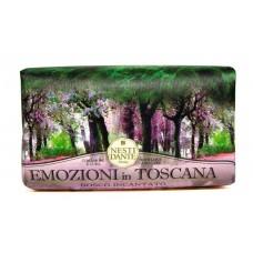 NESTI DANTE EMOZIONI IN TOSCANA Enchanting Forest - Мыло Очарованный Лес (увлажняющее и успокаивающее) 250мл