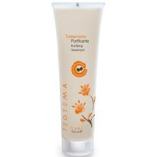 TEOTEMA Sebum Specific Purifying Treatment - Очищающая глина для кожи головы 150мл